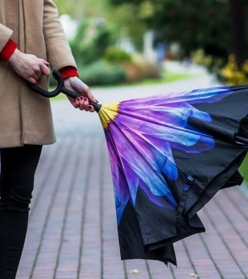 Ця парасолька буде сухою навіть після сильної зливи!, фото-3