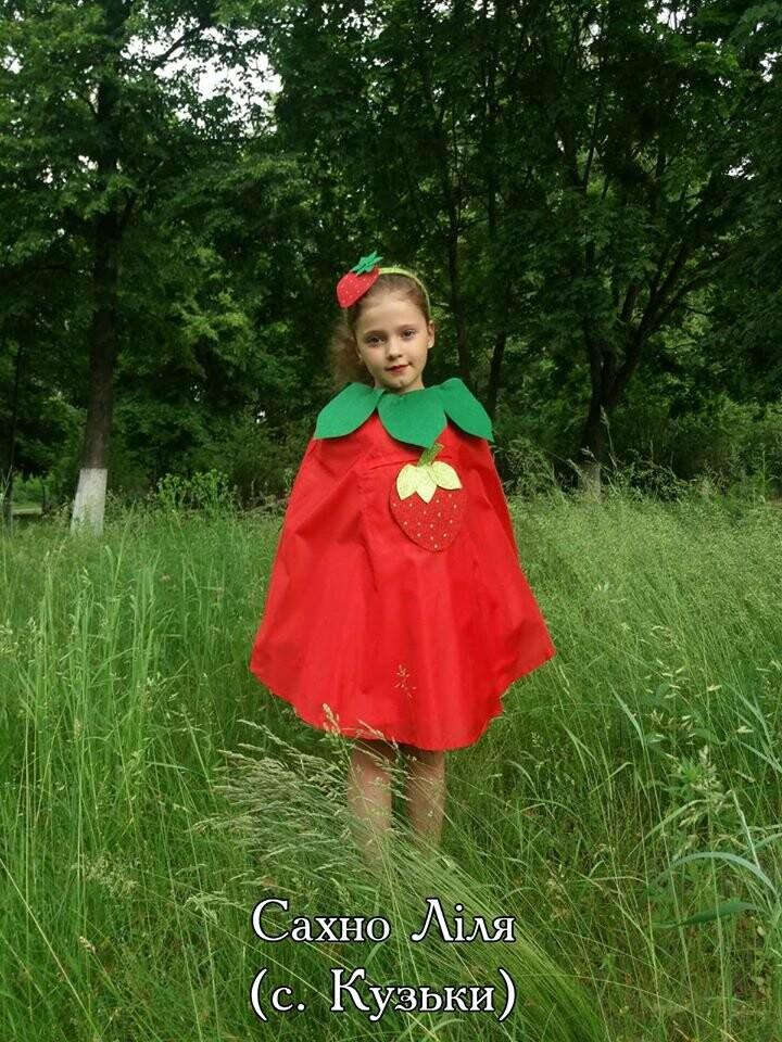 На Конотопщині проводять конкурс на найкращий полуничний костюм, фото-1