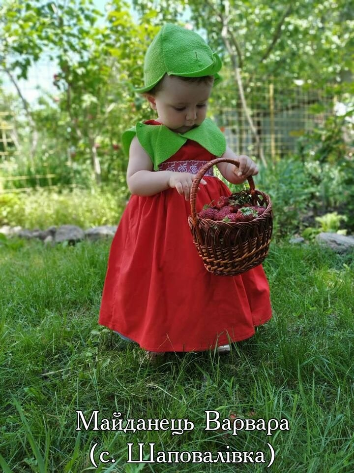 На Конотопщині проводять конкурс на найкращий полуничний костюм, фото-2