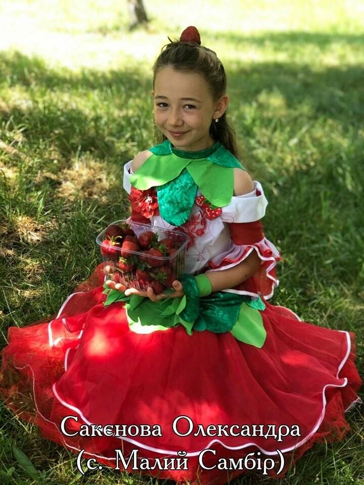 На Конотопщині проводять конкурс на найкращий полуничний костюм, фото-3