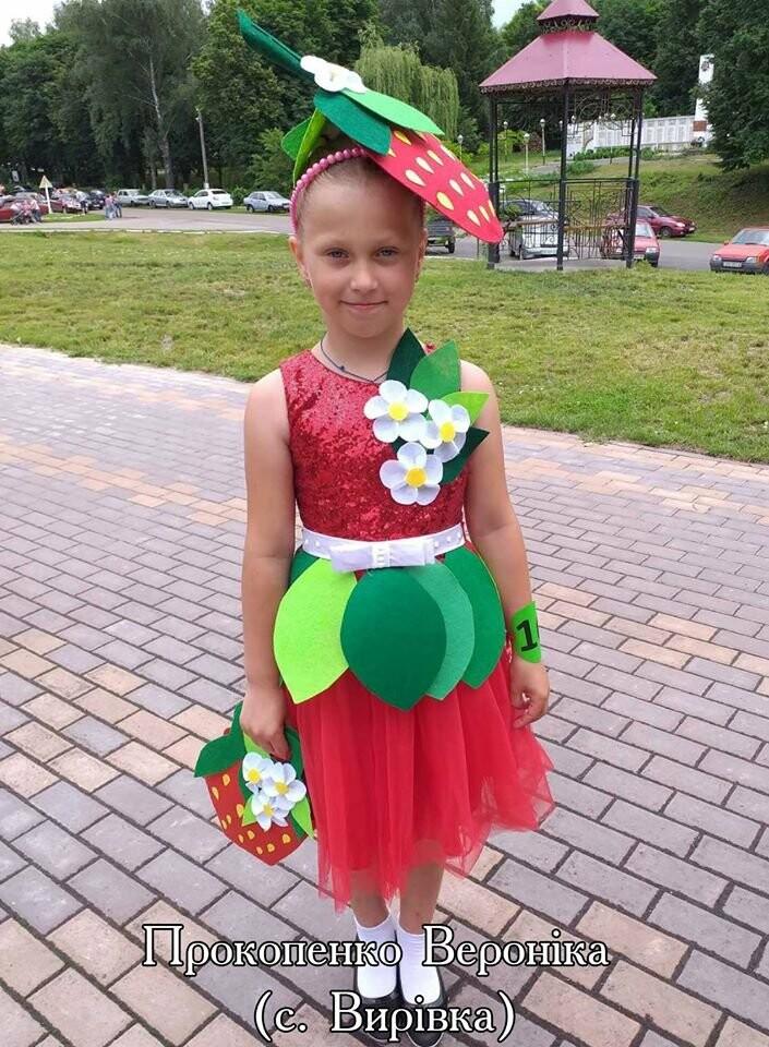 На Конотопщині проводять конкурс на найкращий полуничний костюм, фото-8