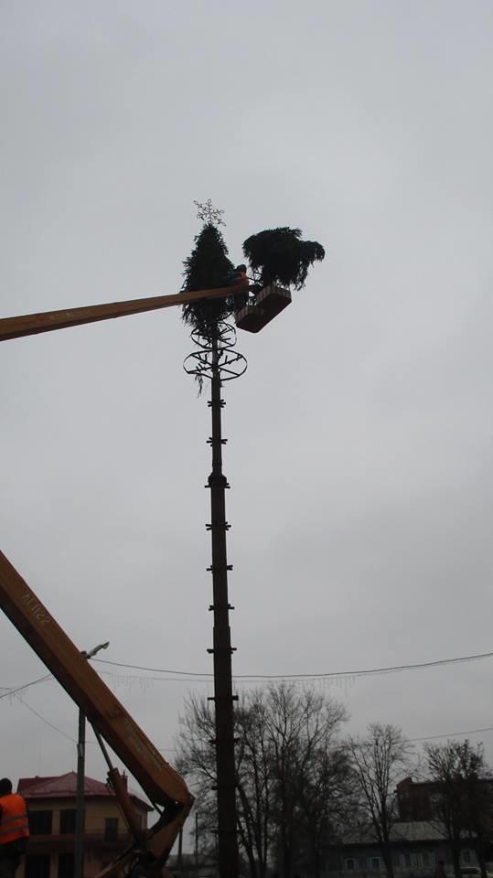 Свято наближається: у Конотопі встановлюють новорічну ялинку , фото-2
