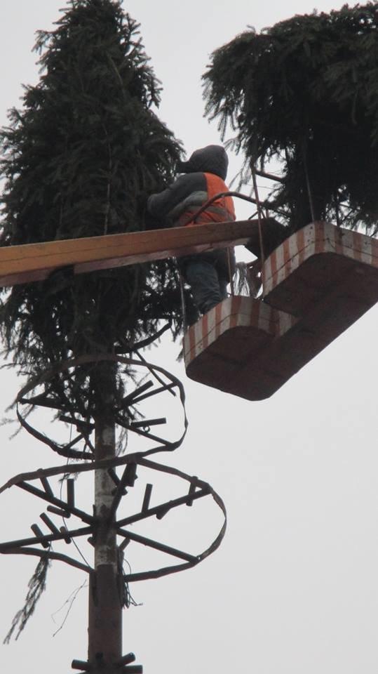 Свято наближається: у Конотопі встановлюють новорічну ялинку , фото-1