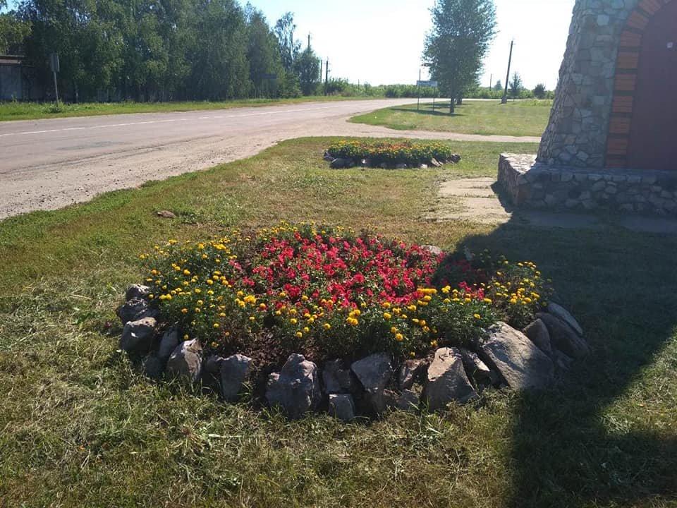 У Конотопі приводять до ладу квітники, фото-1