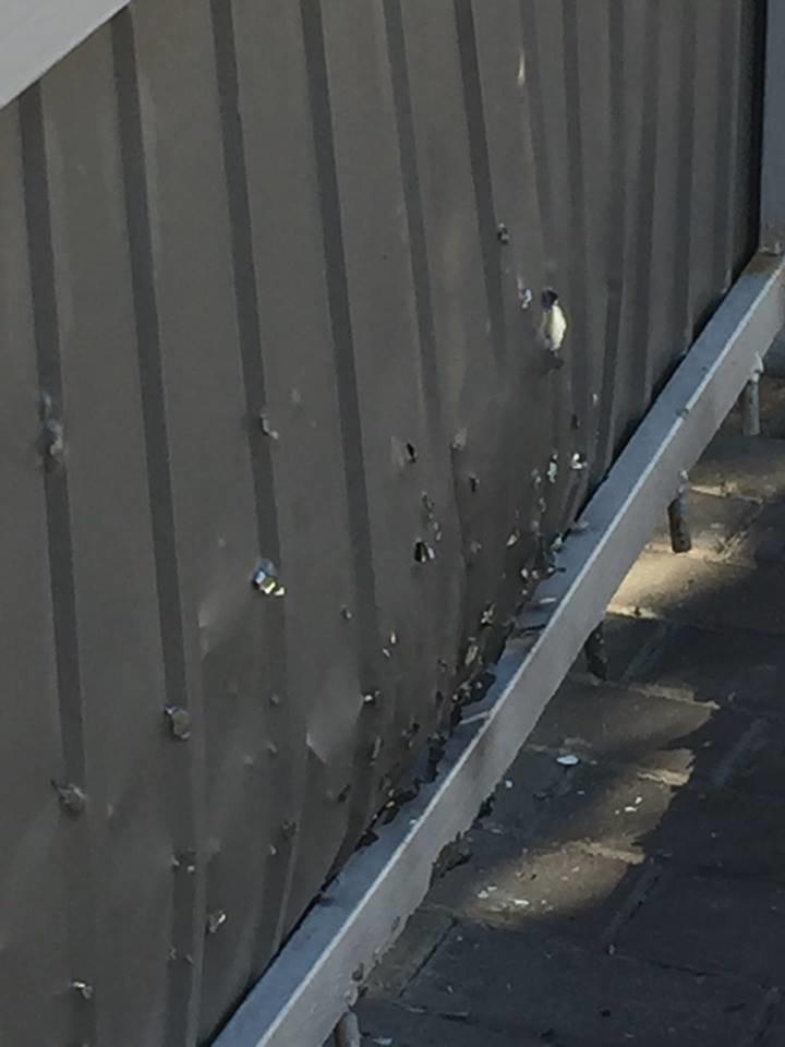 Хто кинув гранату під двір депутата міськради Івана Огрохіна?, фото-2
