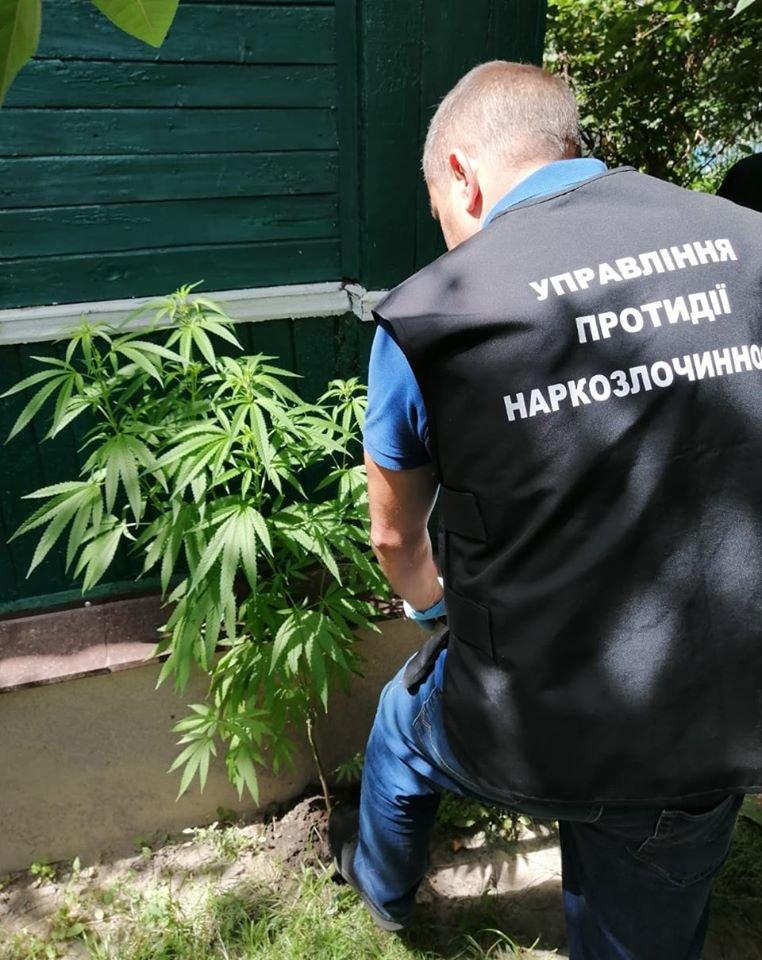 Поліція вилучила у конотопця наркотики та зброю, фото-1