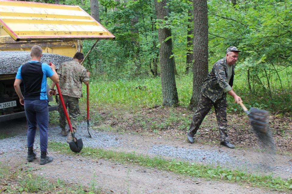 На Конотопщині ремонтують лісові дороги+ФОТО, фото-1